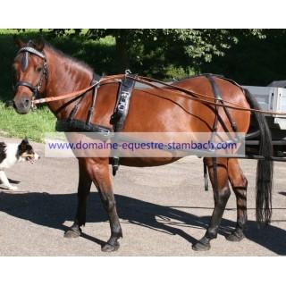"Harnais ""GP"" un cheval bricole anatomique"