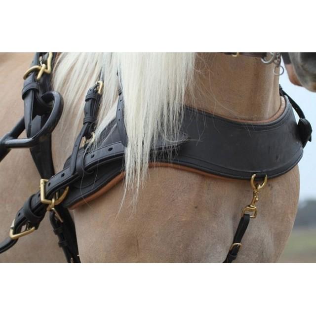 Bricole anatomique en cuir Idéal Equestian freestyl