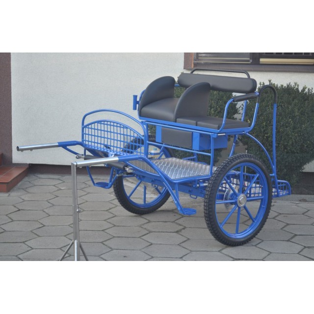 voiture hippomobile 2 roues