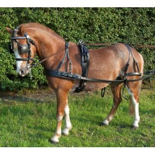 Harnais attelage en cuir à un poney