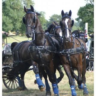 Harnais ZILCO ELITE à 4 chevaux