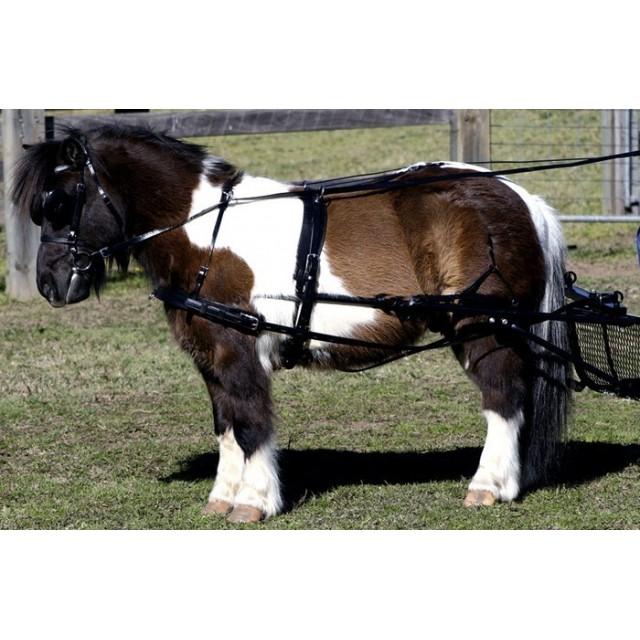 Harnais ZILCO SL à 4 chevaux